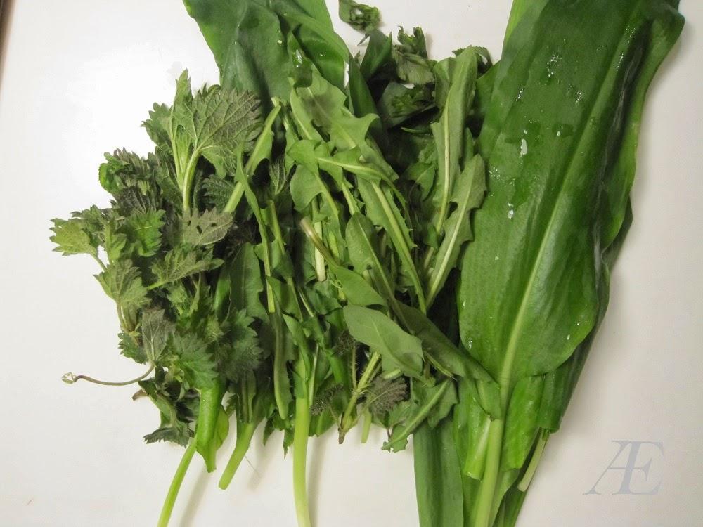 Ramsløg og andet grønt til en nem pesto opskrift