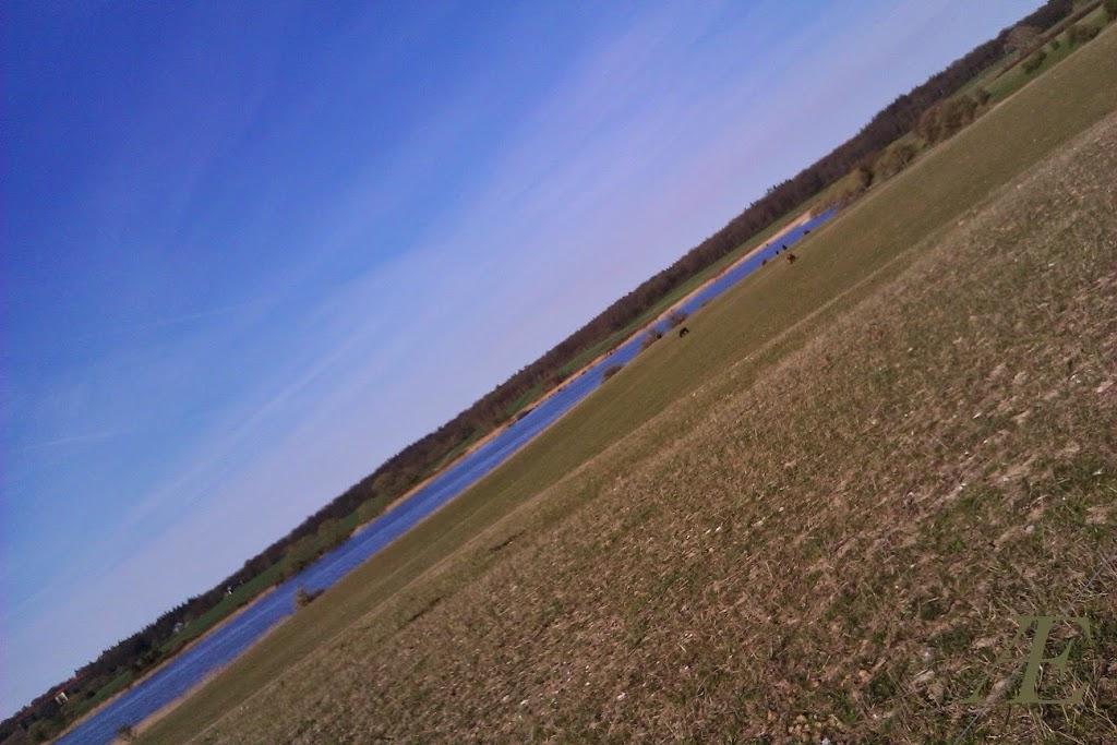 Kattinge sø.